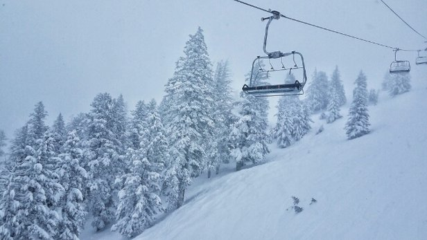 Bogus Basin - The entire backside of the mountain was amazing yesterday.  - © anonymous