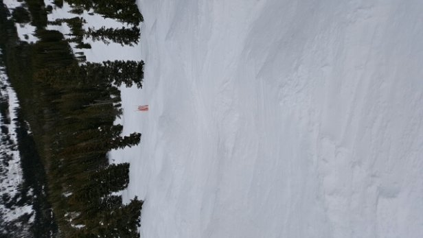 Eldora Mountain Resort - Warm temps kept the bumps relatively soft.   - © anonymous