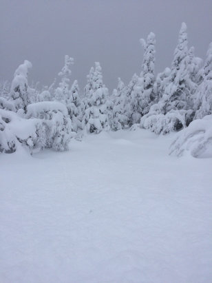 Stowe Mountain Resort - Best Pow of the year.  - © Hammertime