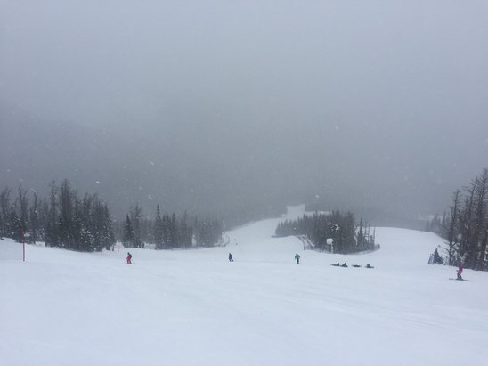 Nakiska Ski Area - A great day. Snowed off and on all day and was snowing huge flakes as we left at four. Should be amazing. Just don't come tomorrow. Wait till Sat.  - ©jkippers's iPhone
