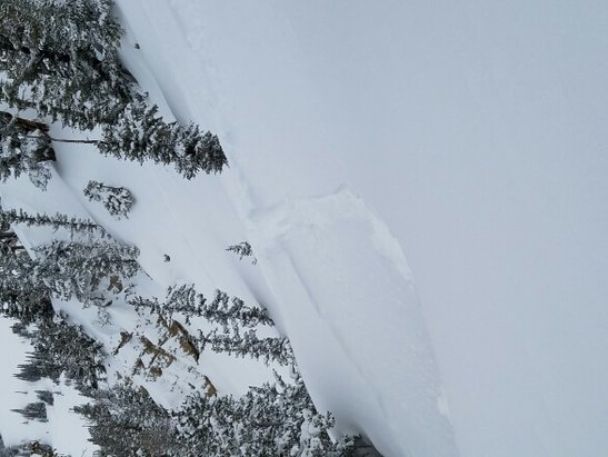 "Alta Ski Area - catherines was niice....  10"" seemed like more! - © east coaster"