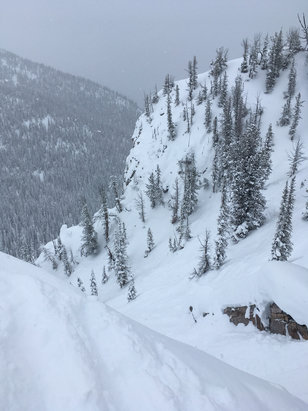 Kicking Horse - Awesome powder