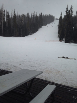 Sunrise Park Resort - Started snowing!  - © Lisa's iPhone