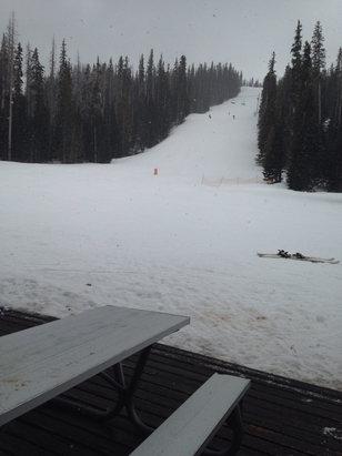 Sunrise Park Resort - Started snowing!  - ©Lisa's iPhone