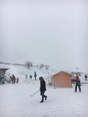 Le Mont Dore - 20cm of fresh powder and it's still snowing