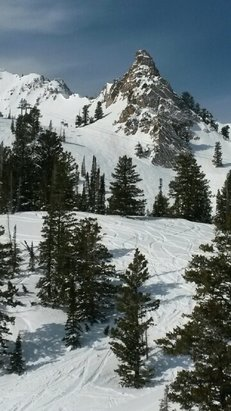 Snowbasin - good almost spring plenty warm and soft not ice and crunchy yet - © snowboard