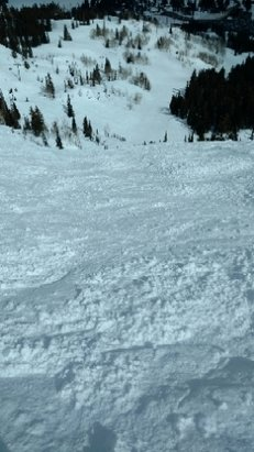 Brighton Resort - always a good day on the snow - © anonymous