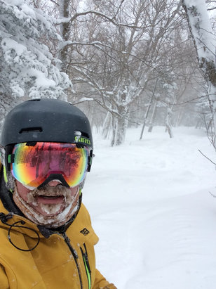 "Jay Peak - Ullr's parting gift in an uneven winter. 36""+ in glades on the upper mountain. Light and fluffy. The photos is Beaver glade