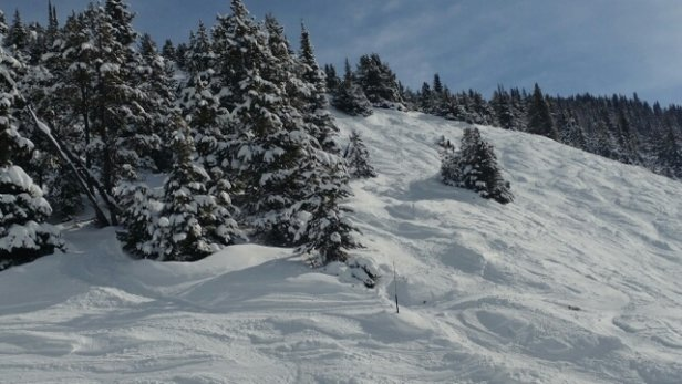 Lake Louise - Friday.. buy far was the best day of the season fresh powder  - © anonymous