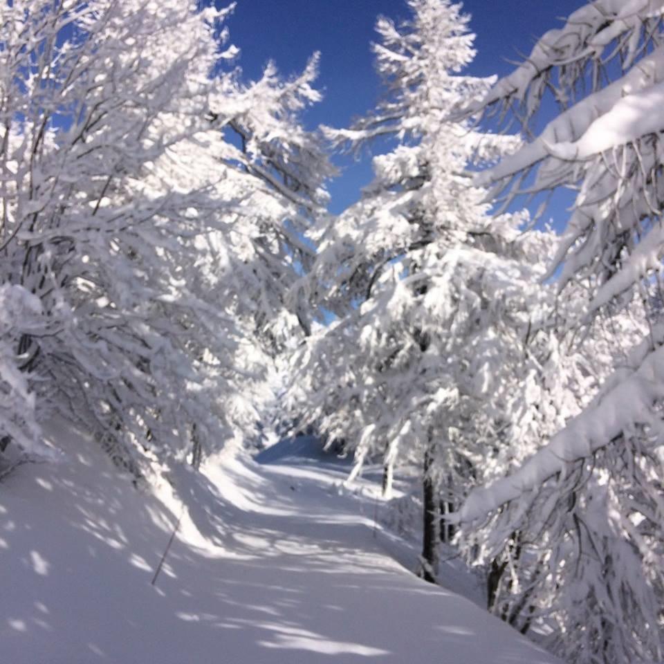 50cm of fresh snow in Bardonecchia March 26th, 2017 - ©Bardonecchia Ski/Facebook