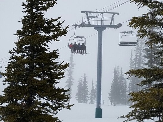 Beaver Creek - Snowing about an inch an hour up top. Nice temperature keeping snow good. - © anonymous