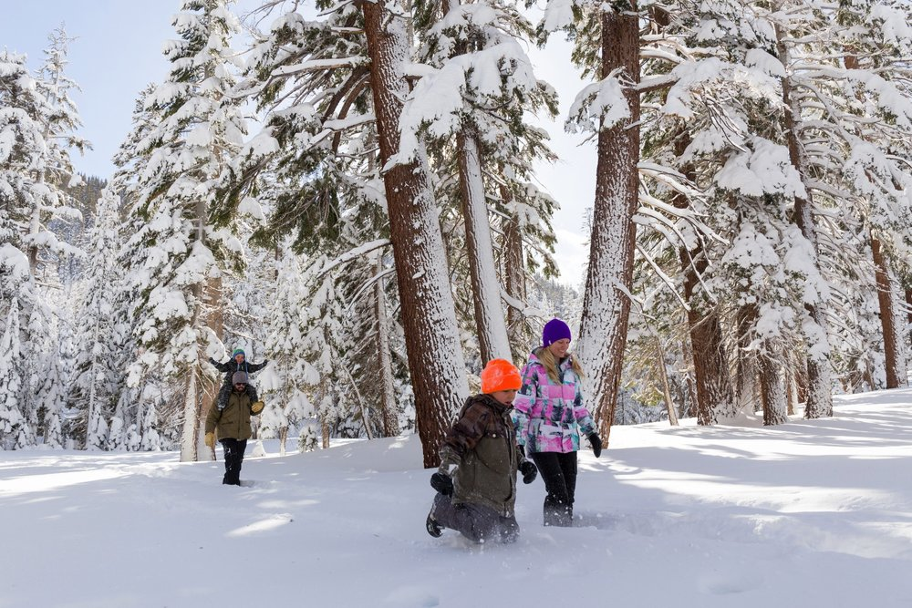 Fun and free family activities abound in Mammoth Lakes. - © Mammoth Lakes Tourism