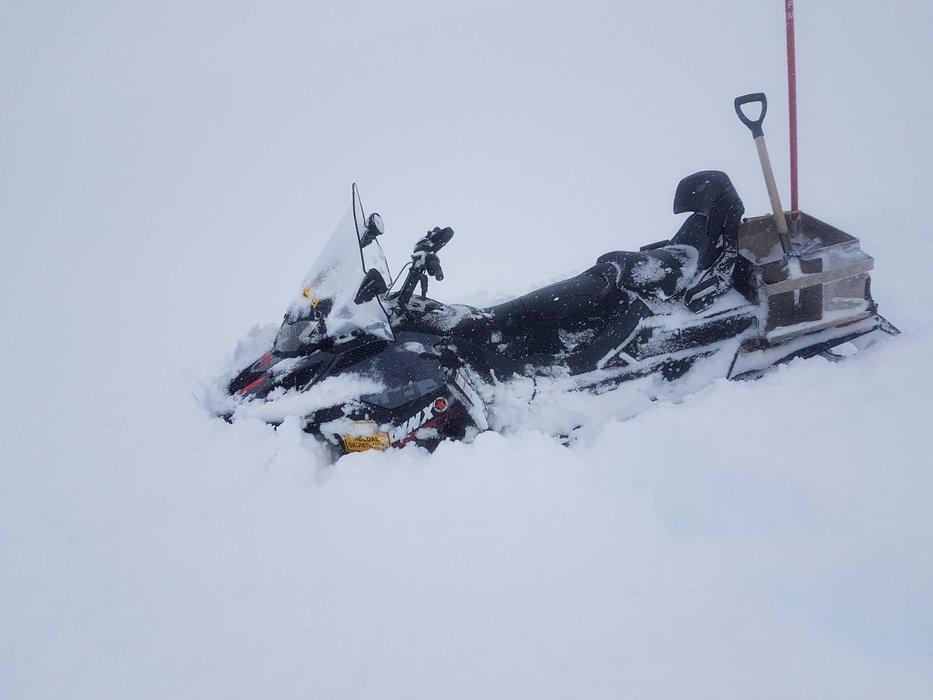 Det har kommet over en meter nysnø i Røldal de siste 7 dagene. - © Røldal Skisenter