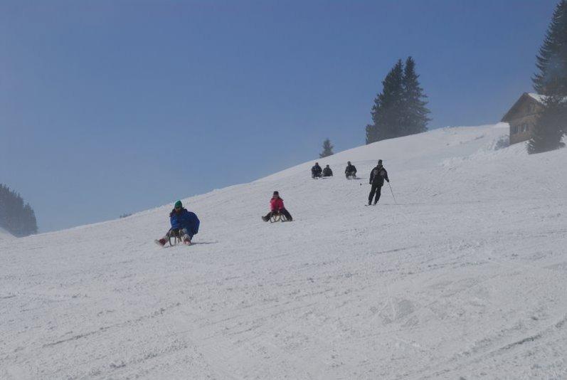 Skifahrer und Rodler bevölkern den Mittag bei Immenstadt