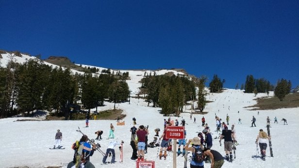 Squaw Valley - Alpine Meadows - great day! Rode July 1! great there early....snow was fast and soft.Shirley 