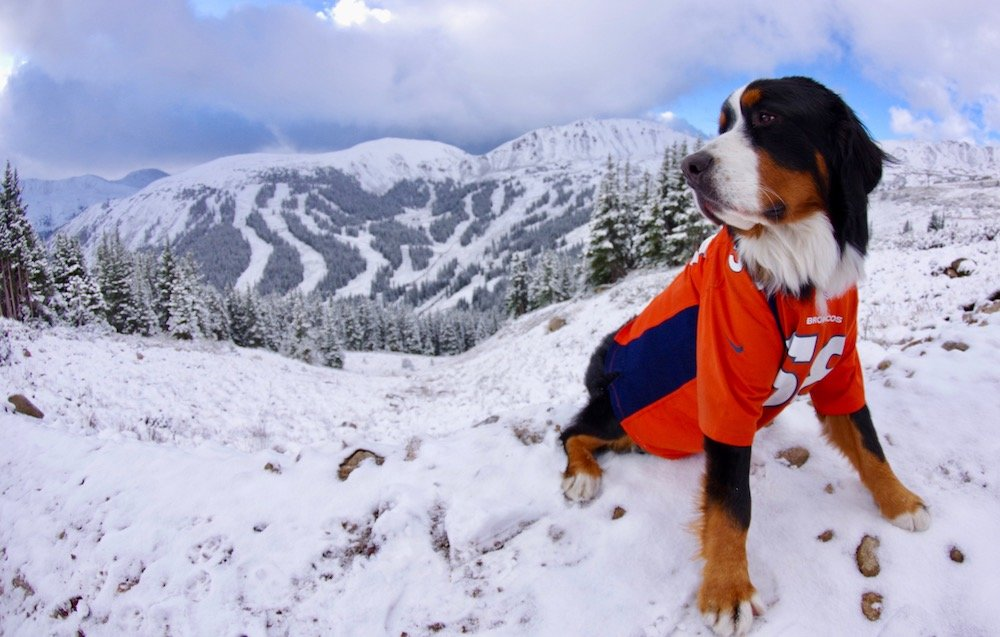 Parker strikes a fall pose at Loveland Ski Area. - © Dustin Schaefer