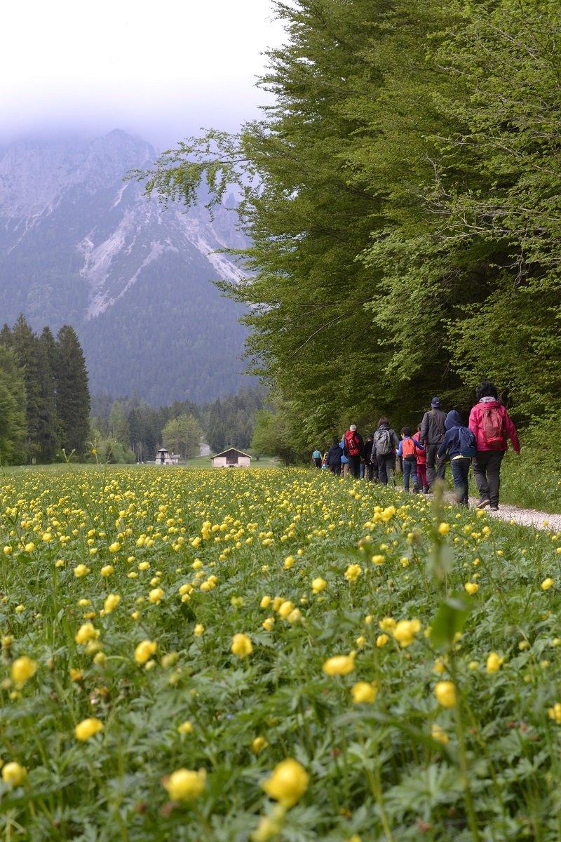 San Martino di Castrozza - © www.stradadeiformaggi.it