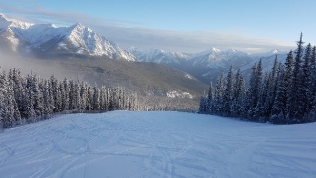 Nakiska Ski Area - Amazing powder this morning after the storm - © anonymous