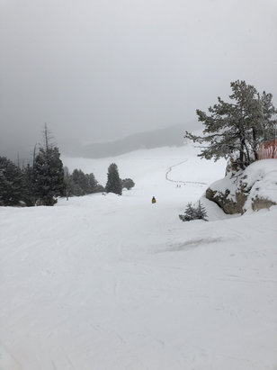 Meadowlark Ski Lodge - I skied on the 23rd of dec 2017, they have everything open and it is in great shape with lots of powder on skiers left side of mountain. If you have never been to meadow lark give it a try. The staff was amazing from the ticket counter to rentals to the lifties to the ski patrol everyone went out of their way to be nice and accommodating. Really blew me away with the customer service!  - © Ryan Hofsheier's iPhone