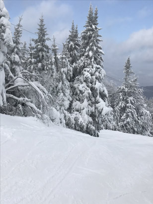 Gore Mountain - Cold but the conditions are great! - © iPhone
