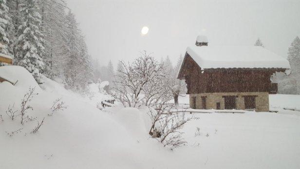 Macugnaga - ha nevicato tutta notte e su tutte le piste stamattina c'era uno strato di 20 cm di neve fresca! aggiornate skiinfo xke dice a valle 0 cm e 25 cm in quota ma in realt - © Anonimo