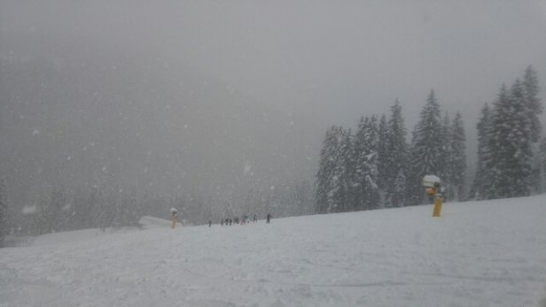 Ellmau - SkiWelt - snowed all day. photo from bottom of run 98. estimate 3inches+ deep fresh powder across most runs. visibility fair.   - © anonymous