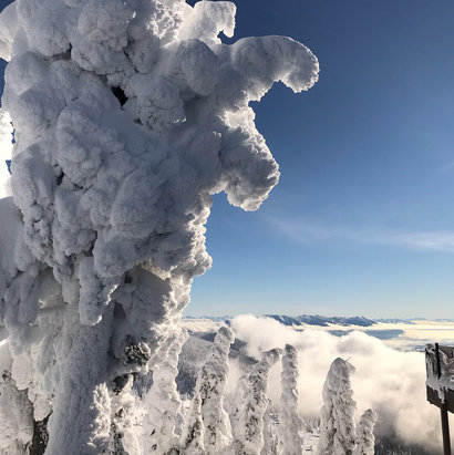 Whitefish Mountain Resort - Amazing snow ghosts facing Glacier National Park - © Helene's iPhone
