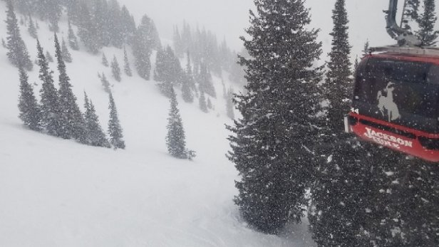 "Jackson Hole - Snowing now!  Supposed to get 6-12"".  Little foggy mid-mountain.  - © Rich"