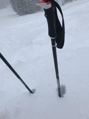 "Deer Valley Resort - Great snow. 15"" fresh at empire peak. No lines.  - © Jeff R"