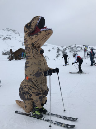 Whistler Blackcomb - Crazy here on the mountain. Even the dinosaurs are enjoying the major dump this week. Oh yeah. 