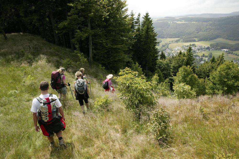 Winterberg wandelen