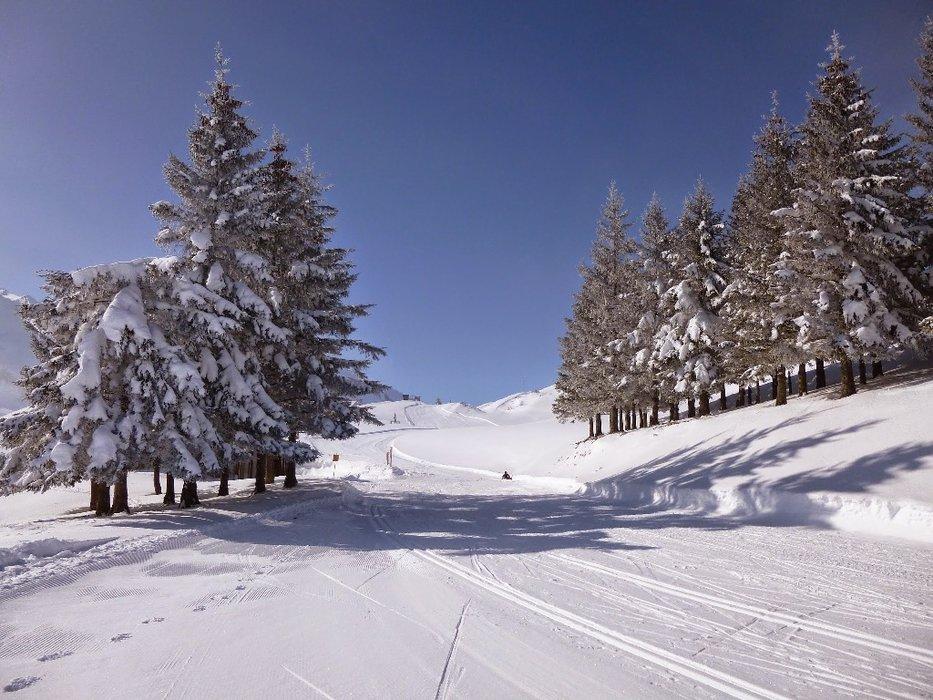 Conditions de glisse idéales (neige fraîche et soleil généreux) sur le domaine nordique du Val d'Azun - © Espace nordique du Val d'Azun