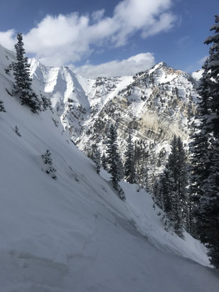 Alta Ski Area - Great day. Crusty underneath but lots of good pockets out there. 