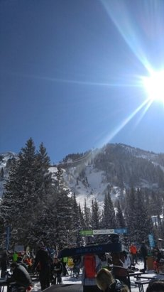 Snowbird - Bluebird day with powder stashes everywhere.