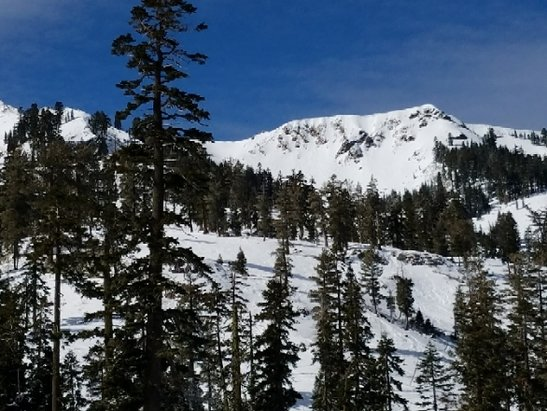 Squaw Valley - Alpine Meadows - Great conditions considering the lack of snow.  Alpine and Wolverine Bowl is in good shape. - © Labrat