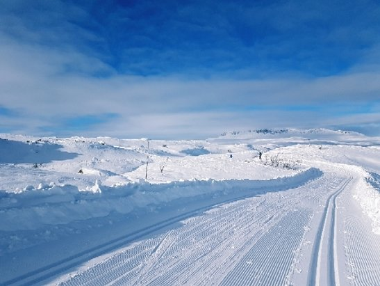 Geilo - Best Weather  - © Anonym