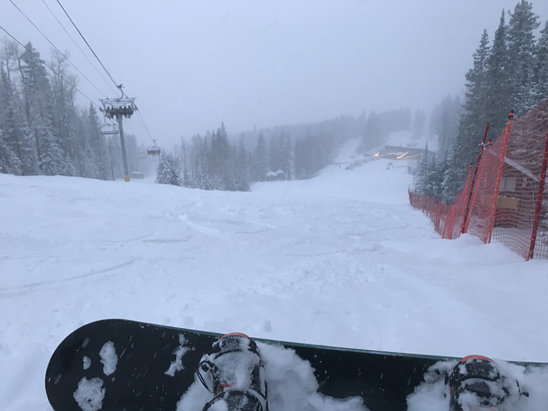 Arizona Snowbowl - Snowing all Friday! Powder!  - © Khollenbeckjr