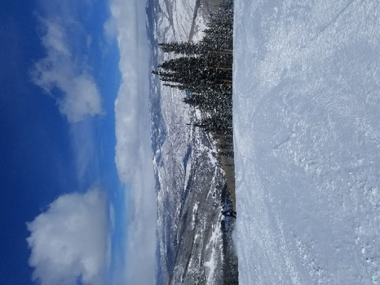 Beaver Creek - Top of Larkspur, Wow! - © Tomba