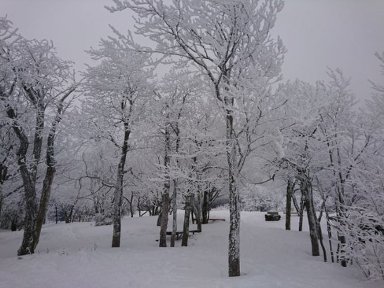 Hunter Mountain - Went 03/05 - it is a winter paradise! Amazing! - © anonymous