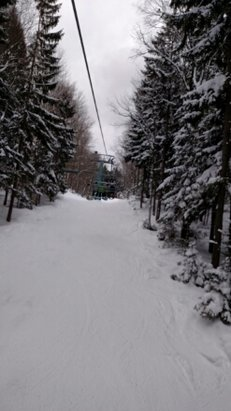 Holiday Valley - Yesterday at HV. Taunenbaum chair with snow covered trees and lots of snow in Happy Glades. - © c.prfrck