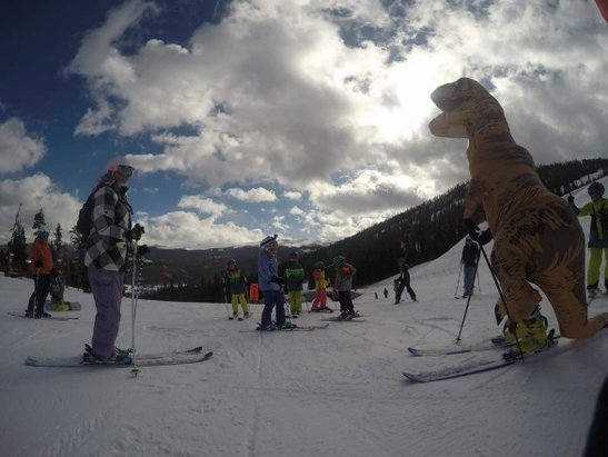 Winter Park Resort - Saw a dinosaur today - © anonymous user