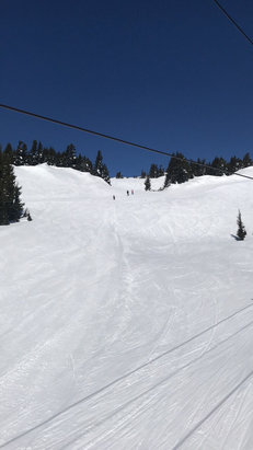 Mt. Hood Meadows - Nice bluebird day. Getting warm but fun time.   - © David Jose Lopez Iphone