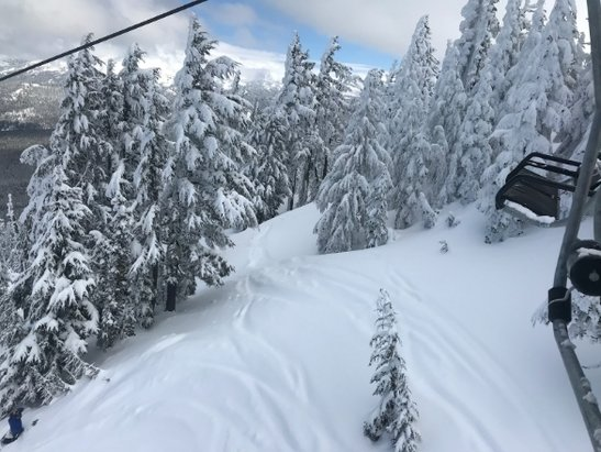 Mt. Bachelor - beautiful day and great snow