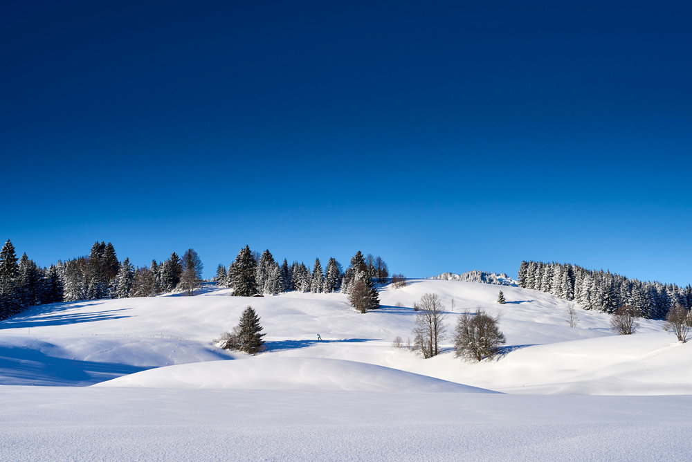 Impressionen aus dem Tannheimer Tal: Schattwald - Zöblen - © TVB Tannheimer Tal_Marco Felgenhauer