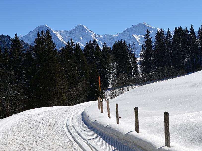 Winterwanderweg und Loipe in Beatenberg - © Beatenberg Tourismus