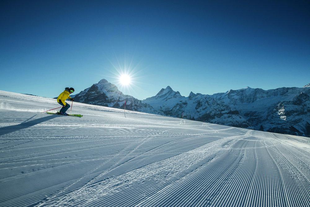 Tolle Piste im Skigebiet Grindelwald-Wengen - © Jungfrau Region