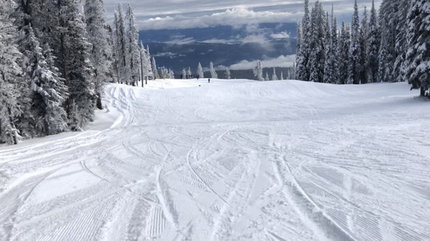 SilverStar - Ok early conditions have had worse ...  - © William Froud 's iPhone