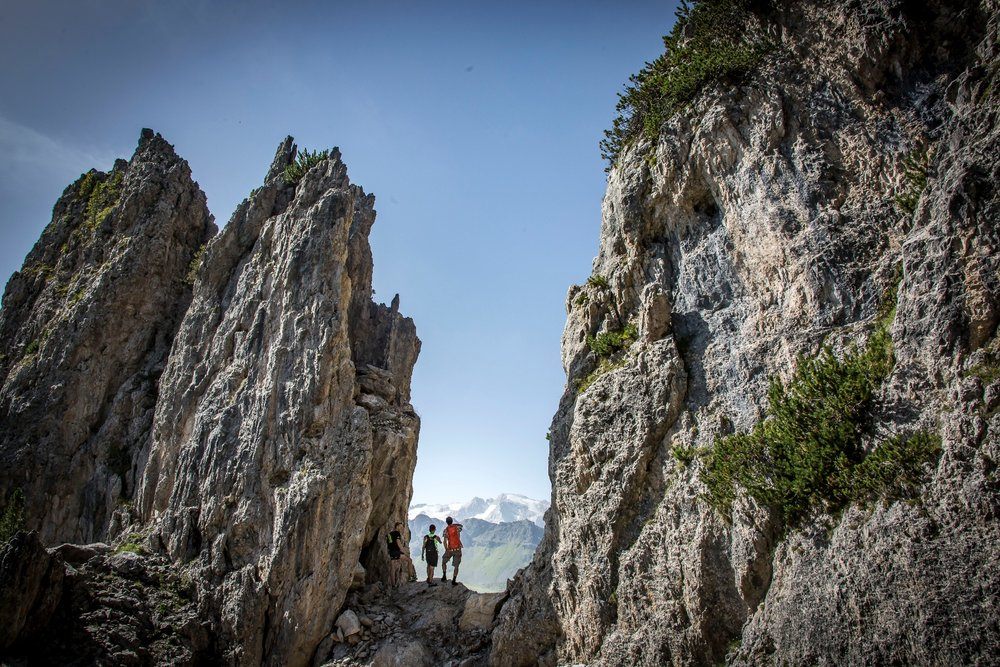 Estate in Alta Badia - © Freddy Planinschek