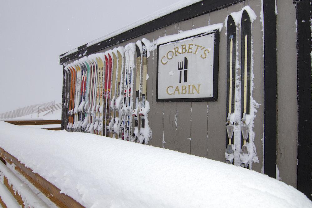 Jackson Hole's 18/19 ski season is off to a great start. - © Jackson Hole