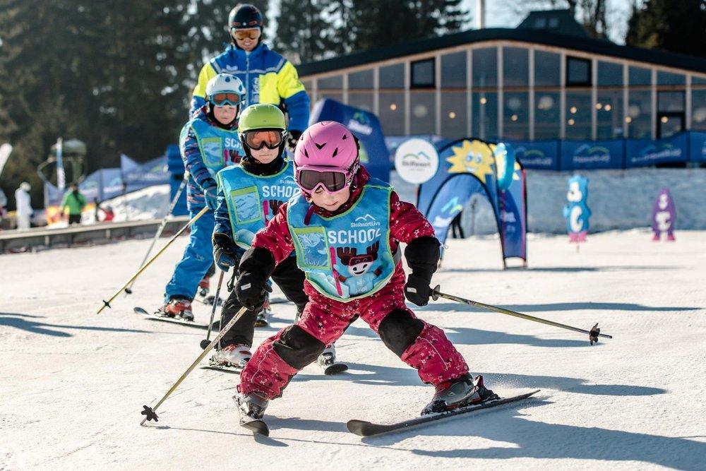Celkem 5 LIVE parků je k dispozici malým lyžařům ve střediscích SkiResortu Černá hora - Pec - © SkiResort ČERNÁ HORA - PEC